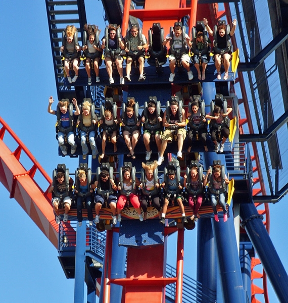 SheiKra is just one of the exciting roller coasters at Busch Gardens Tampa